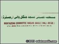 Jungle Wali Masjid
